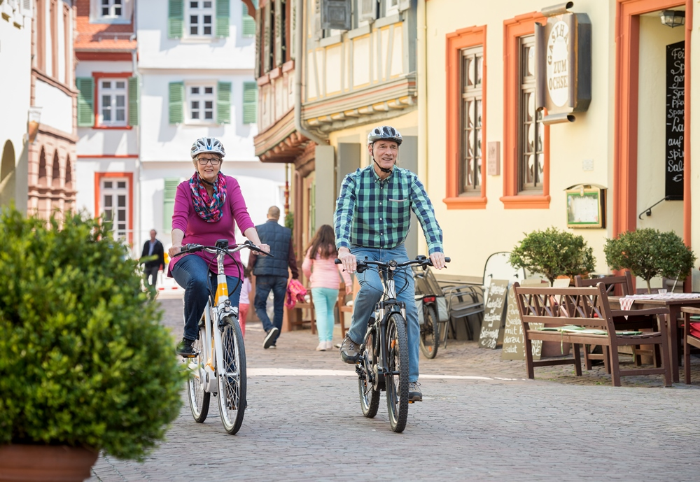 Ladenburg Neckartal-Radweg